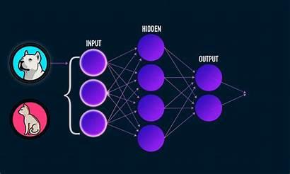Learning Deep Data Science Introduction Medium