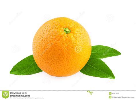 Orange Fruit Over White Stock Photo Image