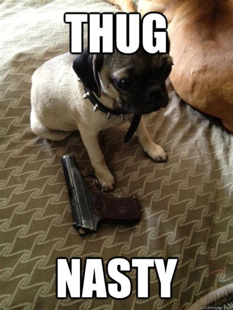 thug nasty   pug nasty pug   quickmeme