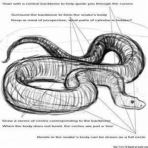 Best 25 Snake Art Ideas On Pinterest Snake Drawing
