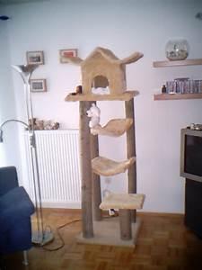 Katzenkratzbaum Selber Machen : kratzbaum ~ Yasmunasinghe.com Haus und Dekorationen
