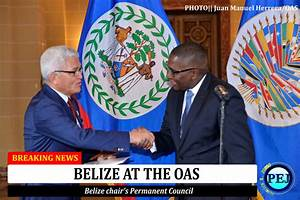 Belize assumes chair of OAS Permanent Council - Patrick E ...