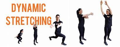 Dynamic Stretching Stretches Looking Help Benefits Squat