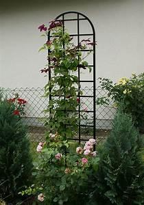 Rankhilfen Für Rosen : freistehende rosen rankhilfe burlington aus metall 200 cm im shop ~ A.2002-acura-tl-radio.info Haus und Dekorationen