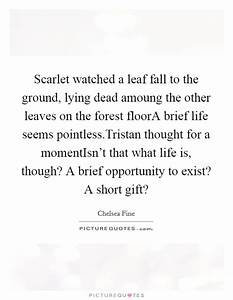 Scarlet watched... Forest Floor Quotes