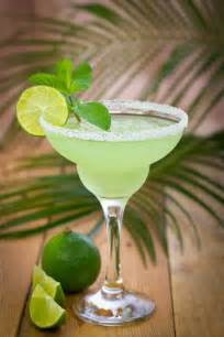 Frozen Margarita Drink Recipe