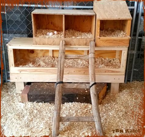 20 Easy & Cheap Diy Chicken Nesting Boxes