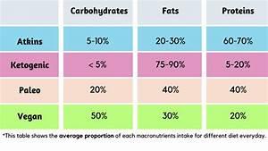 Diets  Atkins Vs Ketogenic Vs Paleo Vs Vegan