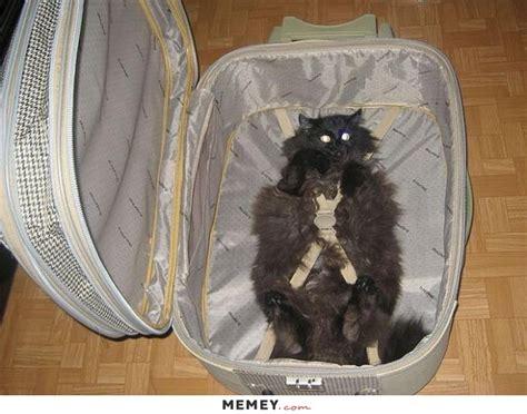 suitcase memes funny suitcase pictures memeycom