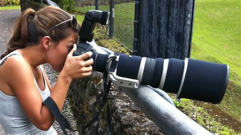 canon cameras  wildlife photography pictures  pin