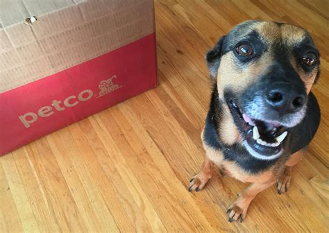 petco repeat delivery helps     paws  dog mama