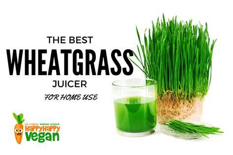 wheatgrass juicer wheat grass vegan