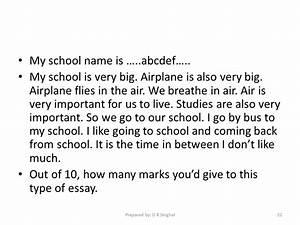 my essay type my school essay