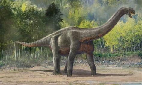 最全的恐龍的資料圖片大全和名字 每日頭條