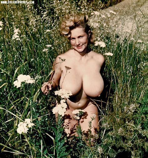 Nude O Rama Vintage Erotica Art Nudes Eros Culture Pin Up