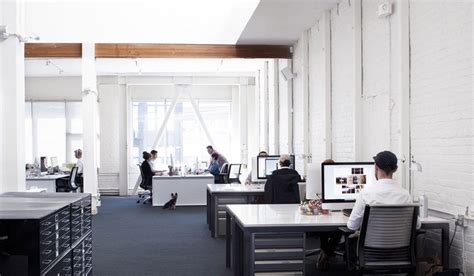Fresh Office Decoration