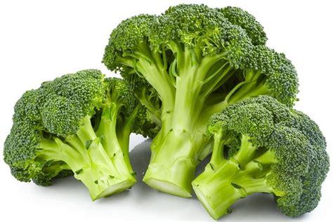 cuisiner le brocolis tout savoir sur le brocolis le choisir le cuisiner le
