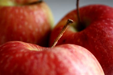 Free picture: red apples, fruit, macro photography