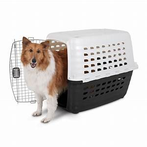The best dog crates in petsmart choose one pet for Best dog crates for puppies
