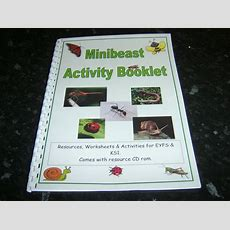 Bugs Minibeast Themed Resource A4 Booklet Worksheets Ideas