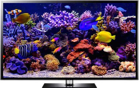 Living Marine Aquarium 2 Animated Wallpaper - best 25 aquarium screensaver ideas on