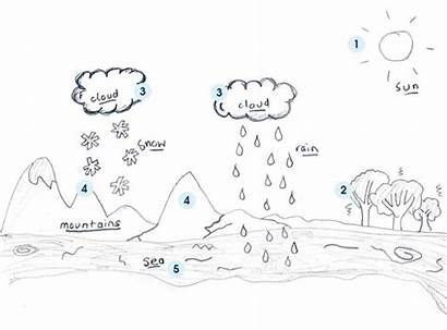 Cycle Water Worksheet Acqua Ciclo Worksheets Colorare