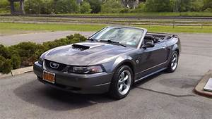 Mustang (4th Gen) (1994-2004) - Mustang - Ford - Cars - Drivn