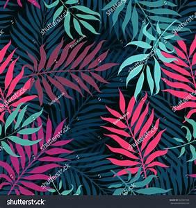 Decorative Colorful Palm Tree Foliage Tropical Stock ...