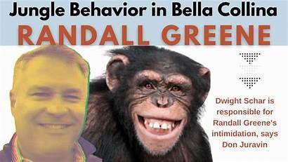 Dwight Randall Schar Greene Collina Bella Behavior