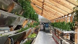 Urban Gardening Definition : how sustainable is vertical farming ~ Eleganceandgraceweddings.com Haus und Dekorationen
