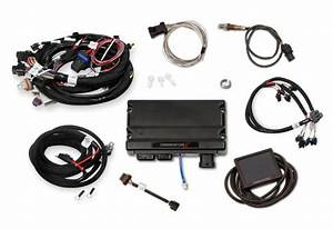 Holley Terminator X Gm Ls Standalone Ecu  U0026 Wire Harness