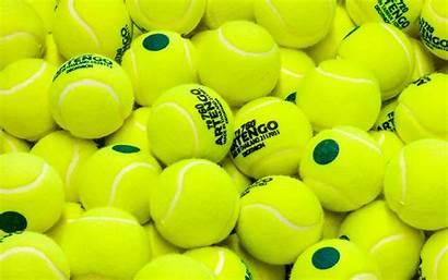 Tennis Balls Taman Lime Terbaru Trend