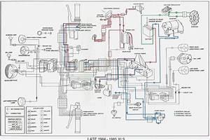 Sportster Wiring Diagram  U2013 Vivresaville Com