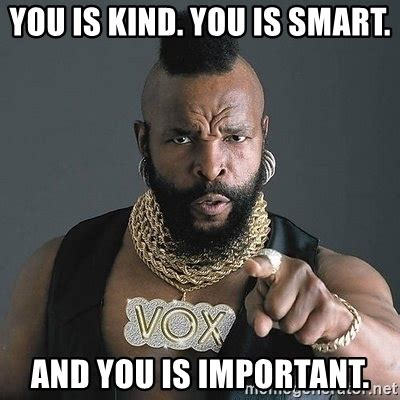 Kind Meme - you is kind you is smart and you is important mr t meme generator