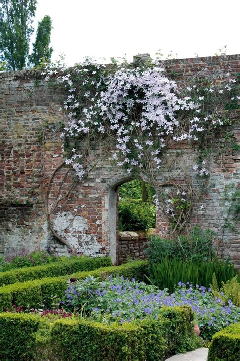 giardino marzo in edicola dal 23 febbraio casa in fiore di marzo cose