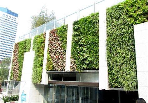 mur vegetal exterieur pas cher mur vegetal pas cher montpellier 13 bursasamsung xyz