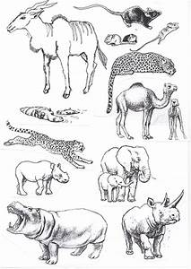 African Drawings Of Animals | www.imgkid.com - The Image ...