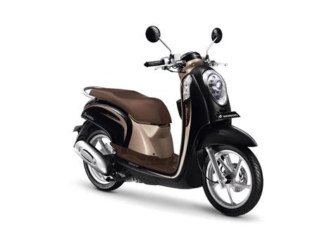 Honda Scoopy by Honda Scoopy 110cc Tmax Rental
