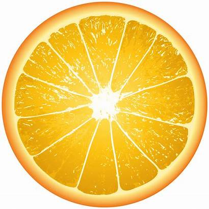 Orange Slice Clip Clipground