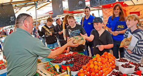 Excursions Top Market by Opal Coast Excursions For Schools