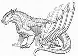 Dragon Coloring Pages Printable Adult Adults sketch template
