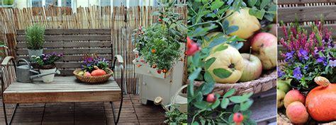 Was Im Herbst Im Garten Machen by Herbst Am Balkon Jetzt Auf Dem Garten Vom Garten
