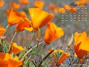 Free monthly calendar desktop wallpaper
