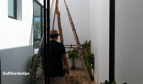 จัดสวนหินง่ายๆ ในพื้นที่เล็กๆกลางบ้าน มีเทคนิคมาฝาก - Pantip