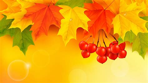 4K Colorful Leaves Wallpapers High Quality | Download Free