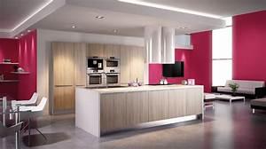 cuisine rouge et grise cuisine blanche et grise astuces d With superior quelle couleur avec du taupe 17 cuisine moderne noir et violet