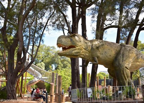 dinosaurs alive  adelaide zoo review whats