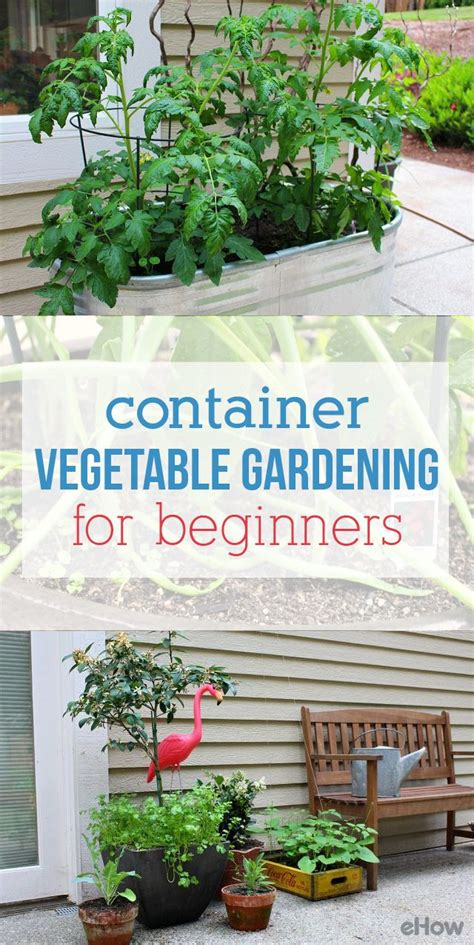 my expanding container vegetable garden vegetable