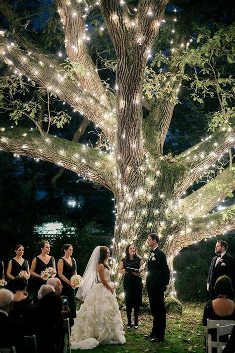 moonlight pennsylvania wedding under a sparkling tree at
