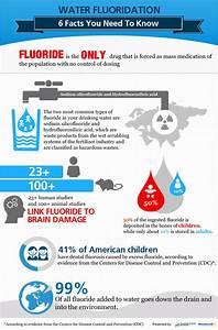 Harvard Study Confirms Fluoride Reduces Children's IQ ...